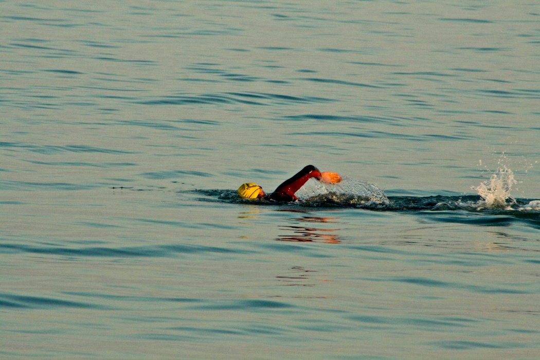 Swimmer in west suit doing front crawl in the sea