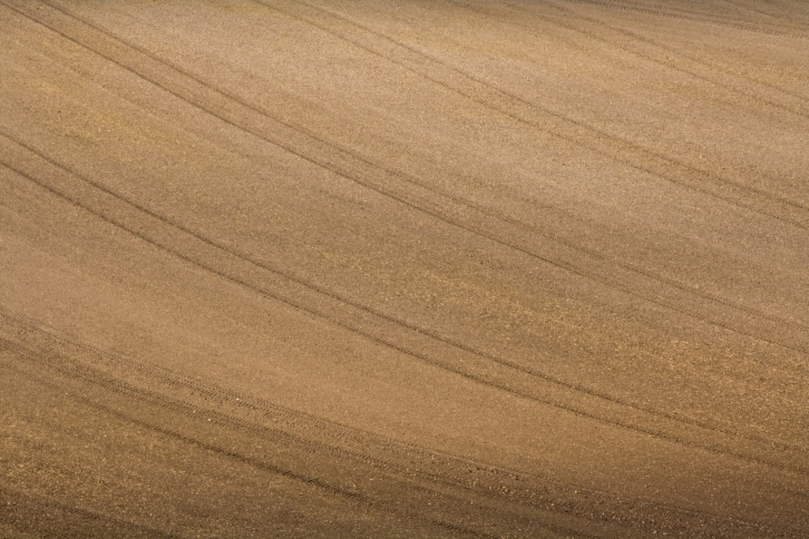 Picture of ploughed field